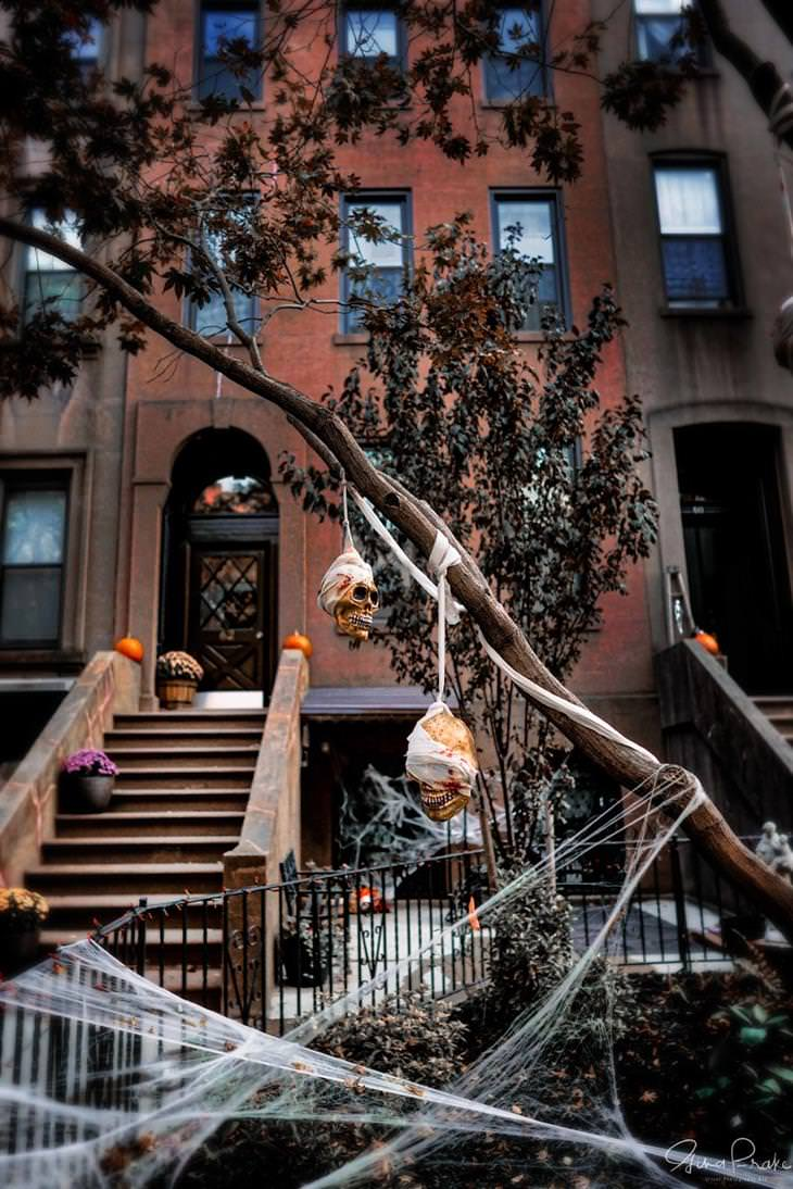 Fall and Halloween in New York