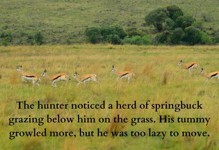 Inspiring African Folktales, bucks