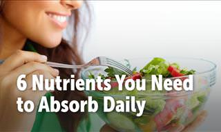 6 Nutrients Yo Need to Absorb Daily