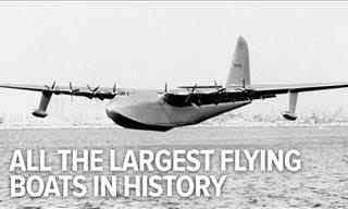 When Water Meets the Sky: 10 of the Largest Known Flying Boats