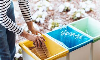 5 Items You Should Not Attempt to Recycle