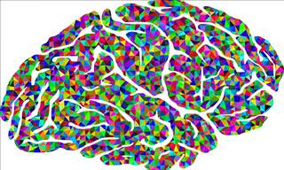 Test: Choose the Colors to See Your Left/Right Brain Balance