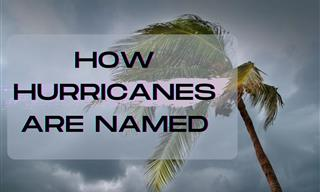 Ever Wondered How Hurricanes Are Named?