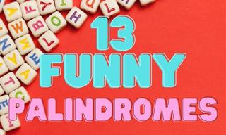 13 Funny Palindromes That Will Make You Giggle