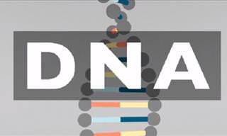What Do You Know About Your DNA?