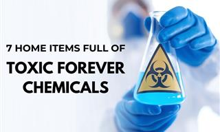 7 Common Items Contaminated by Toxic Forever Chemicals