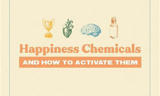 Learn to Control Your Brain's Happy Chemicals