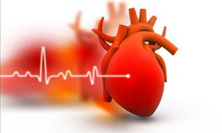 The Heart is a Truly Remarkable Organ. Here's Why...