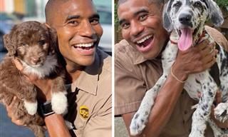 UPS Driver Documents Every Cute Pet He Meets - 18 Photos