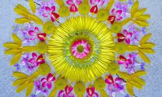 Using Flower Petals to Create Incredible Mandalas!