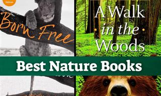7 Must-Read Books for Nature Lovers
