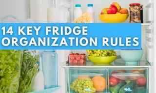 14 Simple Rules to Always Have an Organized Fridge