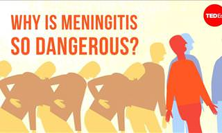 Why Is Meningitis So Dangerous to Us?