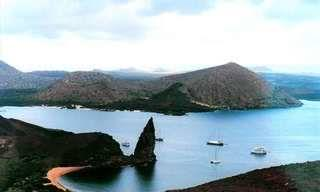 If You Love Nature, You Must See the Galapagos Islands!