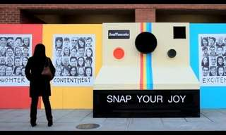 Snap Your Joy - Terrific!