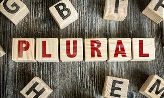 Quiz: Can You Identify the Correct Plurals?