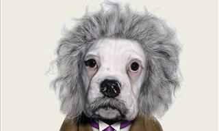 If Historical Figures Were Played by Our Pets