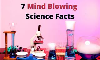 7 Mind Blowing Science Facts School Left Out