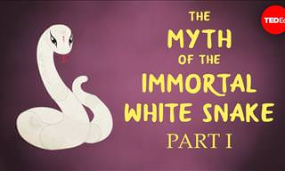 The Ancient Chinese Myth about a White Snake and a Herbalist