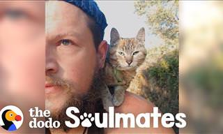 Road Adventures: Adopted Kitten and Man Travel Together on a Bike