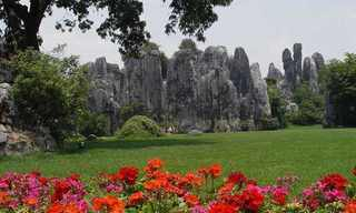The Shilin Stone Forest