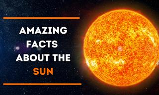 The Sun: 10 Things to Know About the Star of the Solar System