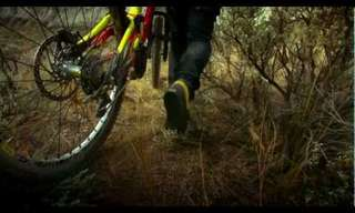 Video: Where the Trail Ends