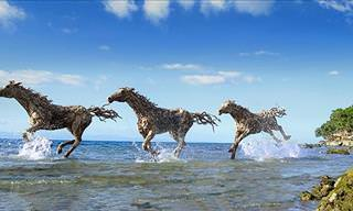 Spectacular Sculpture Creations