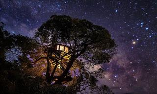 These Night-Time Pics Seize the Ethereal Face of the Skies