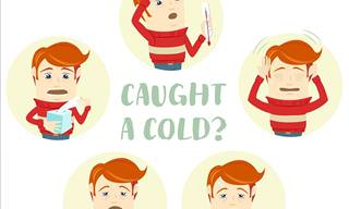 The Common Cold: Warning Signs, Symptoms and Treatment