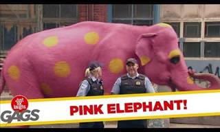 Do You See a Pink Elephant?