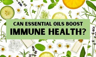 Do Essential Oils Benefit the Immune System