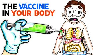 Here's What You Should Know About COVID-19 Vaccines