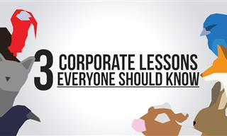 Joke: 3 Corporate Lessons Everyone Should Know