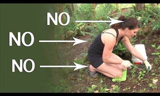 Is Gardening Hurting Your Back? Problem Fixed!