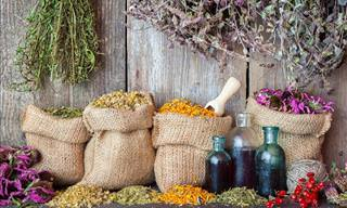 How Much Do You Know About These Natural Remedies?