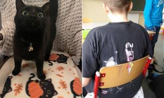 14 Adorable and Funny Coincidences You've Got to See!
