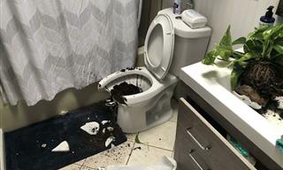 17 Home Renovations Gone EXTREMELY Wrong