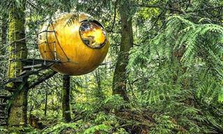 9 Crazy Homes: These Houses Are Out of This World!