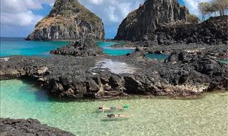 Dive Into the Waters off the Coast of Fernando de Noronha