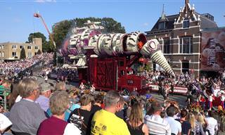 Videos From The Corso Zundert Flower Parade 2018