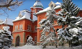 The City of Sapporo in Japan Is a MUST VISIT!