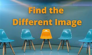 QUIZ: Can You Help Us Find the Different Image?