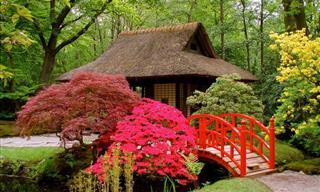 20 Stunning Japanese Gardens Around the Globe