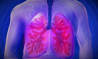 10 Simple Ways to Keep Your Lungs Healthier