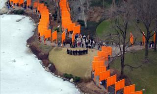 Making of 50 Years of Art: The Work of Christo Javacheff!