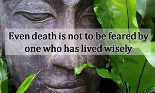 These Wise Buddha Sayings Made Me Think...