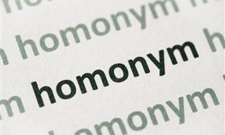 English Quiz: Can You Find the Right Homonym?