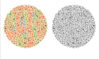 Amazing! This is How Color-Blind People See the World