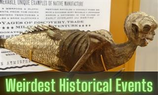 You Won't Read About These Unusual Events in History Books